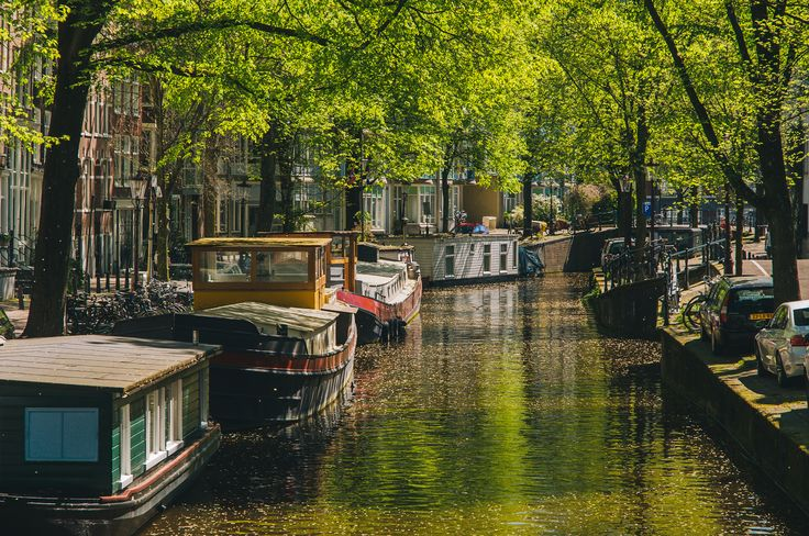 """amsterdam(ned) II - Amsterdam, May 2016. Three times I went to Amsterdam, and three times I desperately fell in love with this city. I'm Amsterdam(ned). <br><a href=""""https://instagram.com/cybermonkey82/"""">Instagram</a> 
