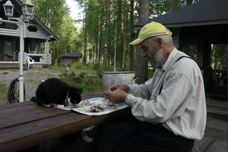 Isäni, eli meidän vaarin ja Bllan yhteinen tärkeä aamuhetki. Vaari aina keittää pikkukalat ja poistaa niistä isoimmat ruodot ja Bella syö jo kuormasta :)