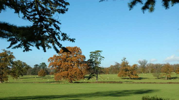 Enjoy autumn colours at Clytha Estate © Will Lewis