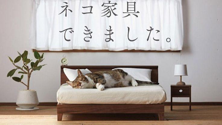 Miniature cat furniture from Japan