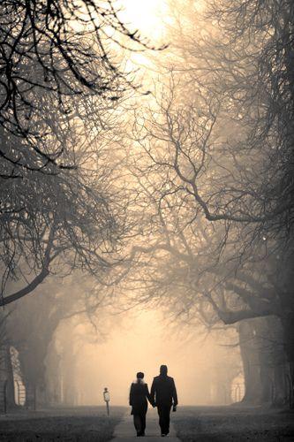 Hand in hand #tree #walk #photography