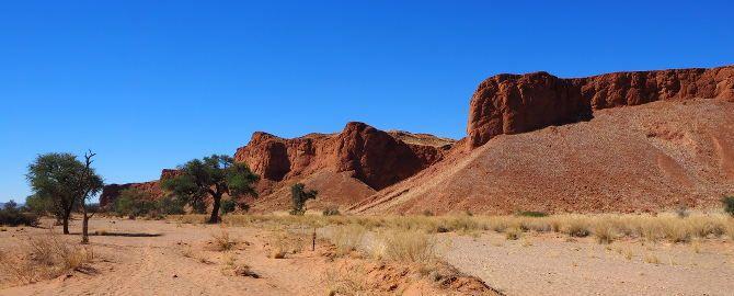 Wie lebt man in der Namib Wüste?