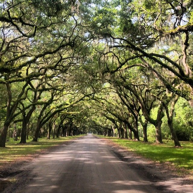 Top 5 Photos You Have To Take While Re In Savannah Georgia