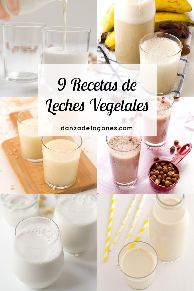 9 Recetas de Leches Vegetales | danzadefogones.com #danzadefogones #vegano #vegana #singluten #receta