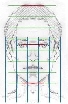Beginners groep 21 november 2013 Van voren lijkt een gezicht op een ovaal. Het gezicht kunnen wij op te delen in drie ongeveer gelijke delen : Bovenste deel met het voorhoofd. Middendeel met met og…