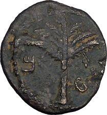 BAR KOKHBA REVOLT for FREEDOM of ISRAEL 131AD Ancient Jewish Rebel Coin i44138