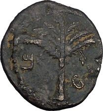 BAR KOKHBA REVOLT for FREEDOM of ISRAEL 131AD Ancient Jewish Rebel Coin i44138