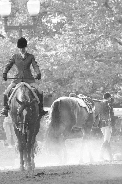 Nice moment---Checking for twists in your reins.