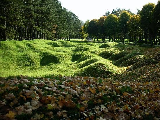 Craters at Vimy Ridge. It seems Nature nurtures and restores human follies to beauty.