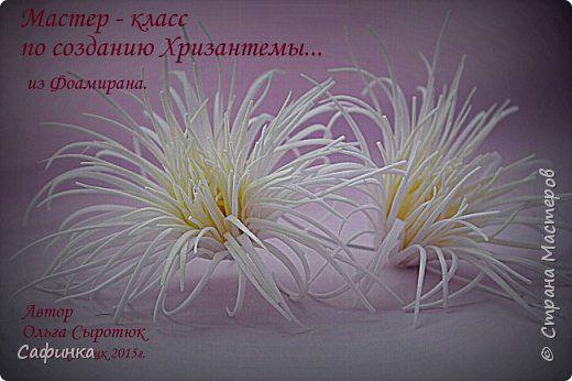 Видео Мастер-класс Флористика искусственная Моделирование конструирование Создаем цветочное чудо Хризантема - игольчатая из Фоамирана  от Ольги Сыротюк Фоамиран фом фото 1