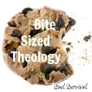 """Bite Sized Theology: The Canon - The Bible is made up of 66 books written by more than 40 different men. There are 39 books in the Old Testament and 27 in the New Testament.  One big question is """"How did those 66 books become recognized as the Bible, also called the Canon of Scriptures?"""" Good question! (read more)"""
