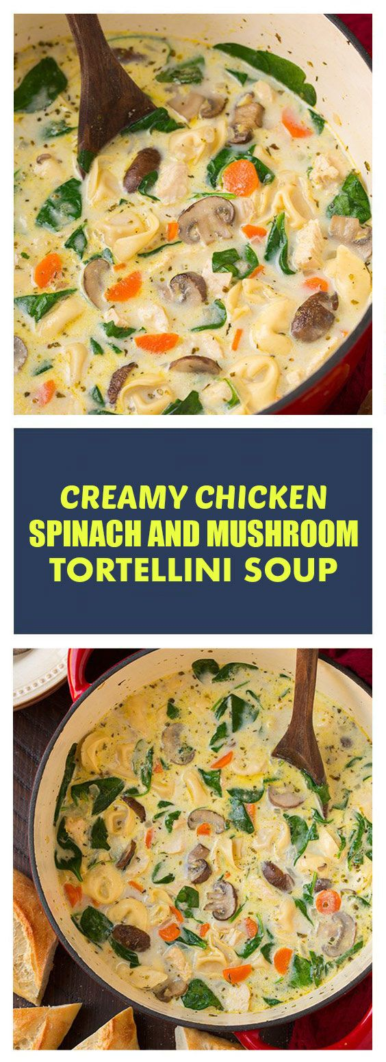 Chicken, spinach and mushroom soup | This is a deliciously …   – random (: