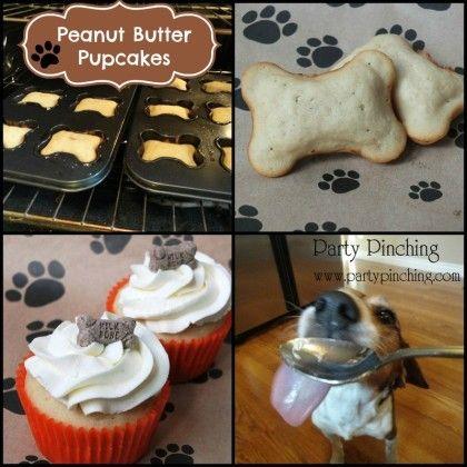pupcakes, dog cupcakes, dog party, dog treats, homemade dog treats, cute beagle