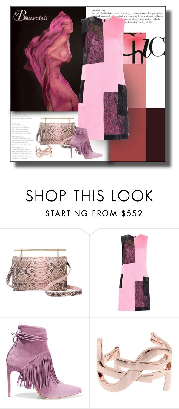 """Lace and Pink Pretty"" by michelletheaflack ❤ liked on Polyvore featuring M2Malletier, Christopher Kane, Bionda Castana, Yves Saint Laurent and Littlepinkdress"