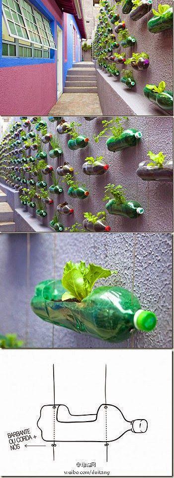 all-garden-world: Plastic Bottle Hanging Planter Vase