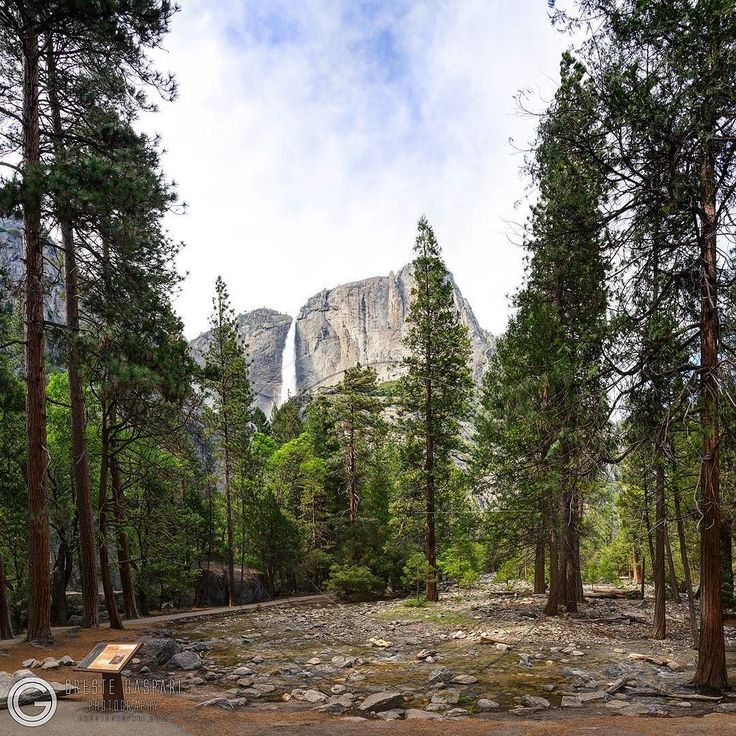 Yosemite National Park - CA Yosemite falls from lower yosemite falls vista point - USA - http://ift.tt/2sjmWiY  #yosemitefalls #yosemite #yosemitenps #yosemitenationalparkguide #yosemitenationalpark #nationalpark #halfdome #elcapitan #yosemitenation #yosemite_national_park  #california #California #usa #usatravel #travelmyusa #travel #usanationalpark #travelmyusa  #travelandleisure #fantastic_earth #earthpix #river #mountain #bestintravel #awesomeearth #nationaldestination #valley…