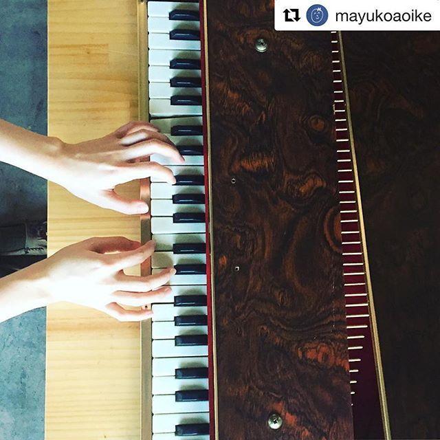 【mina_kobayashi】さんのInstagramをピンしています。 《10/22今週の土曜日です。  @nana__ooo と @mayukoaoike のユニット、ワタアメのliveは13:00からです☁️ ・ ・ 🌳入場フリー・ 🌳10:30〜15:30出入自由です。 🌳焚火するので温まれます。 ・ #Repost @mayukoaoike with @repostapp ・・・ まさかまさかの トイピアノを譲って頂きました . 鍵盤を押すと おでこから頭の周りへ フワァーンと響きわたって 違う世界へとんでゆく感じが すごいです . こんな音がするのですね〜 . 譲って下さったのは ミニ大通にあるガーデニング店 momijiの愉快な店主ムトウさん . ムトウさん曰く およそ120歳のウミガメほどの 大きさで 2歳の柴犬くらいの重さの アバンギャルドな音の トイピアノ! 素晴らしい! . 左右で音の高さにずれがあるのが また可愛いところ なのですが . どなたかピッチを整えられる方 周りにいらっしゃいませんか? . 金属棒の長さによって 音の高さをかえています。…