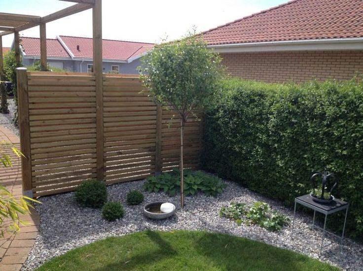 grüne Sichtschutzhecke und Kies Garten
