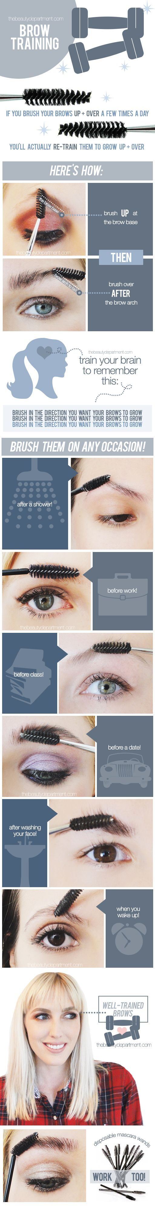 Brow Training: You can't change the direction your brows grow in, but this is a really good habit to get into to make your eyebrows look perfectly groomed #infographic...x