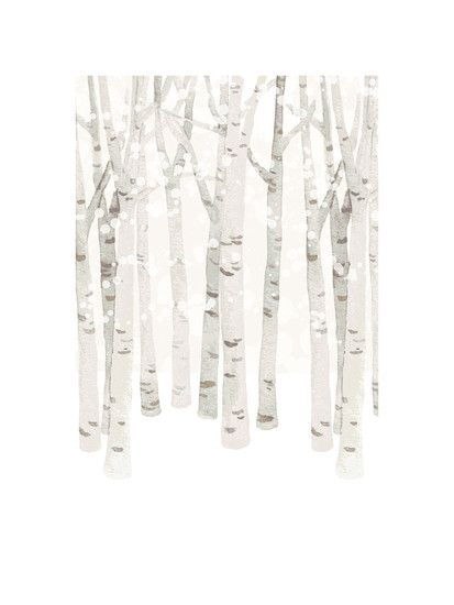 Birch Woods in Winter by Four Wet Feet Design for Minted... Bouleaux for ever....