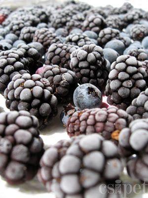 egycsipet: A gyümölcsök fagyasztásáról