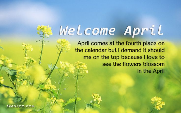 Happy New Month Wishes April 2016