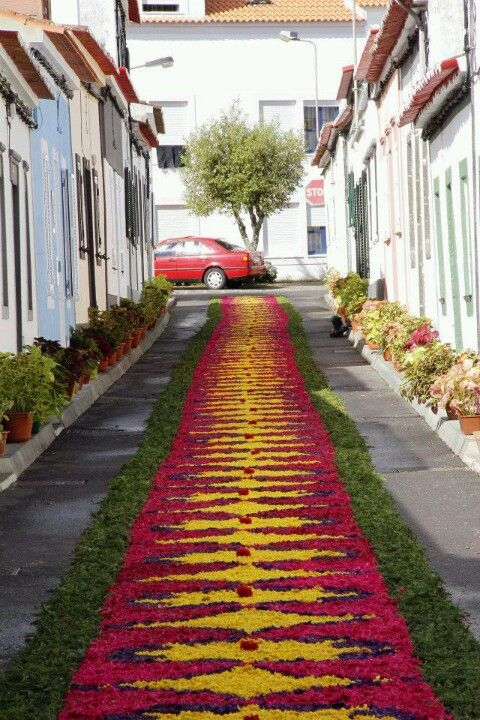 Flower festival, the Azores #Portugal