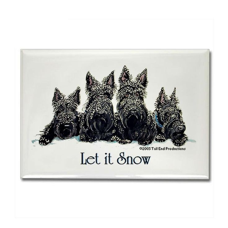 "CafePress - Scottish Terrier Winter Rectangle Magnet - Rectangle Magnet, 2""x3"" Refrigerator Magnet"