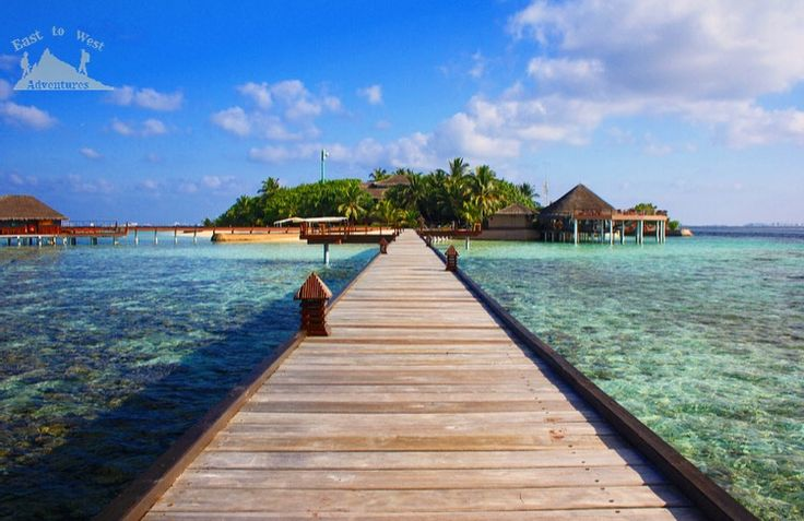 Maldives take me there 💚 #easttowestadventures #maldives #heaven #honeymoon  #whitebeaches #travel #travelblogger #travelphotographer #travelphotography #adaraanprestige  #honeymoon #5starmeal #watervilla #privatepool #indianocean #whitesand #palmtrees #privateisland #onceinalifetime #stepstothesea