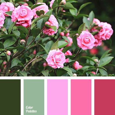 Color Palette #2735