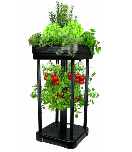 Large Redwood Planter Box For Tomatoes: 30 Best Images About Upside Down Gardening On Pinterest