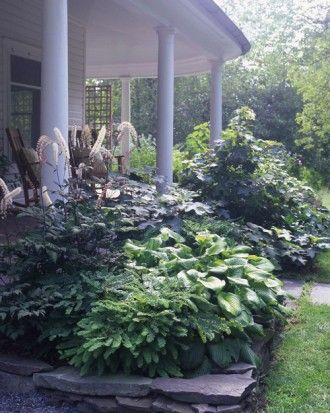 "See the ""Andy's Home"" in our Garden Tour: Foundational Makeover gallery"
