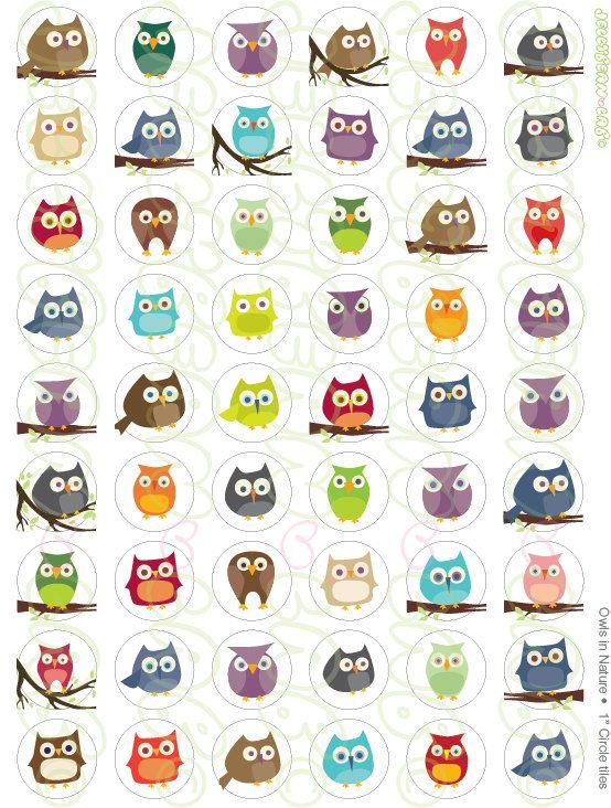 owl bottlecap images