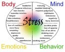 Stress, and how we deal with it, is a big factor in staying motivated. READ ON! :)