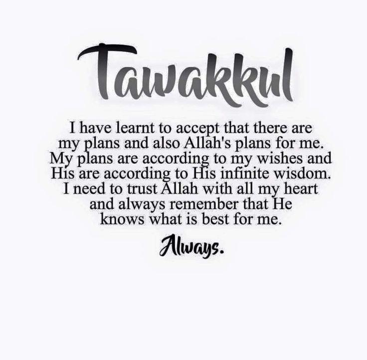 All i want is tawakkal