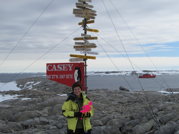 BCNA member Shirley travelled to Antarctica