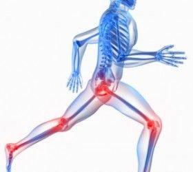 Sistemul osteoarticular