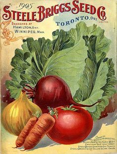 Vintage Seed Packets on Pinterest | Vintage Seed Packets, Seed ...