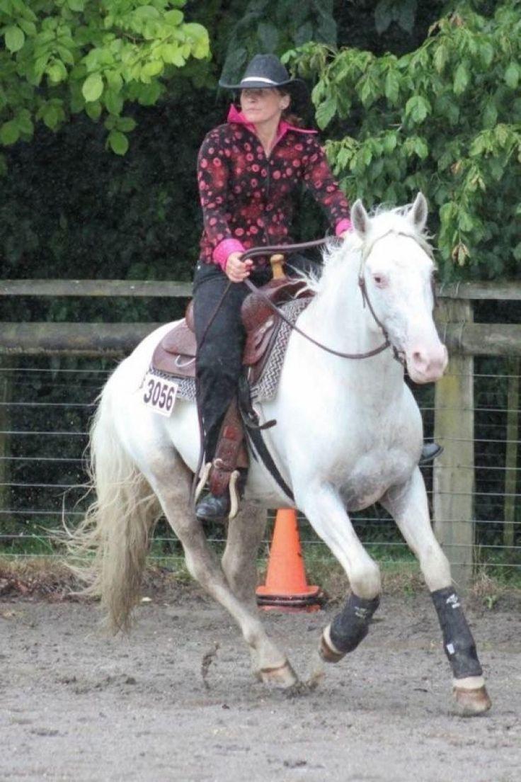 Midnight's Silver Saphire - New Zealand - Appaloosa stallion at stud