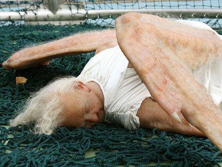 Китайские художники Сунь Юань и Пэн Юй, известные своими провокационными инсталляциями, показали новую работу. Скульптуру «Мертвый ангел» художники выставили в лондонской галерее Saatchi.  Скульптура выглядит очень реалистично и шокирующе. Она изображает мертвую старую женщину с когда-то ангельскими крыльями - сейчас ее крылья без перьев, волосы седы, а лицо покрыто морщинами.  Сами художники объяснили идею своей работы как желание показать тонкую грань между миром земным и миром небесным…