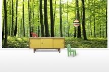 Rural Forest - Fototapeter - Photowall