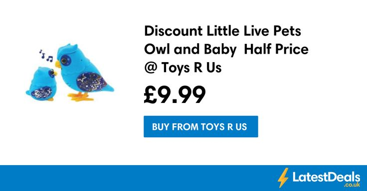 Discount Little Live Pets Owl and Baby  Half Price @ Toys R Us, £9.99 at Toys R Us