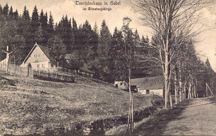 Osada Vidly - Jeseníky ( stará pohlednice )