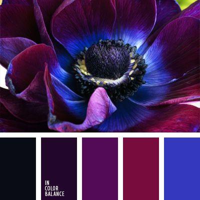 azul neón, burdeos, color azul eléctrico, color azul oscuro con tono violeta, color berenjena, combinación de colores violeta y azul oscuro, elección del color, negro, tonos violetas, violeta neón.