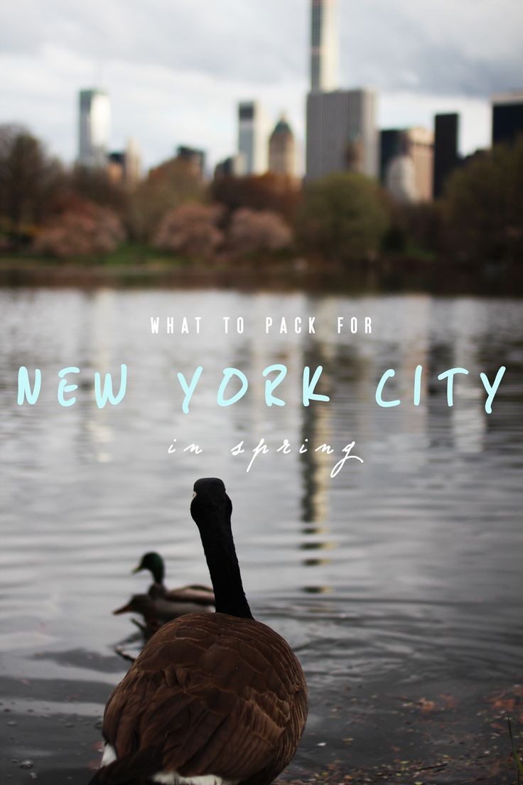 Wondertraum: What to Pack for New York City in Spring