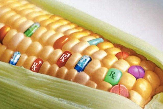 Wenn Sie in Restaurants essen, im Supermarkt konventionell erzeugte oder industriell verarbeitete Lebensmittel kaufen, ja sogar wenn Sie Vitamintabletten einnehmen, die nicht bewusst mit hochwertig…
