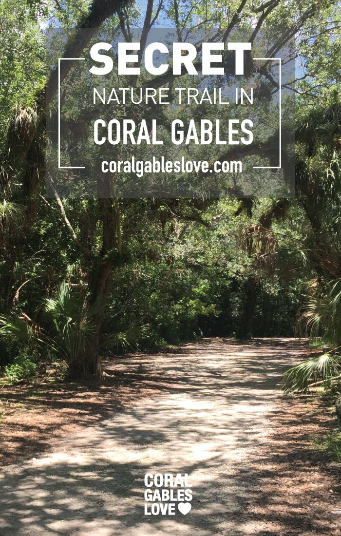 Coral Gables secret nature trail and dog park. Click to read more or pin and…