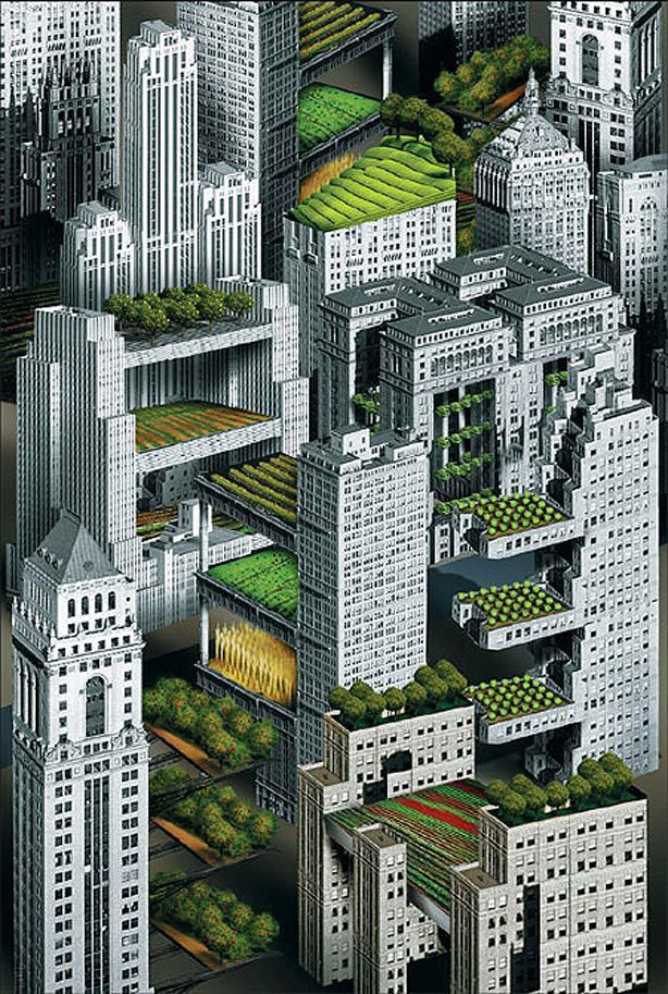 103 best images about rooftop gardening on pinterest