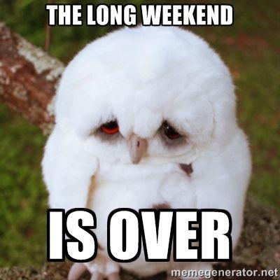 ba81207787f89f4a7f373d740e60343e long weekend meme weekend humor best 20 long weekend meme ideas on pinterest long weekend, long,Are You Free This Weekend Meme