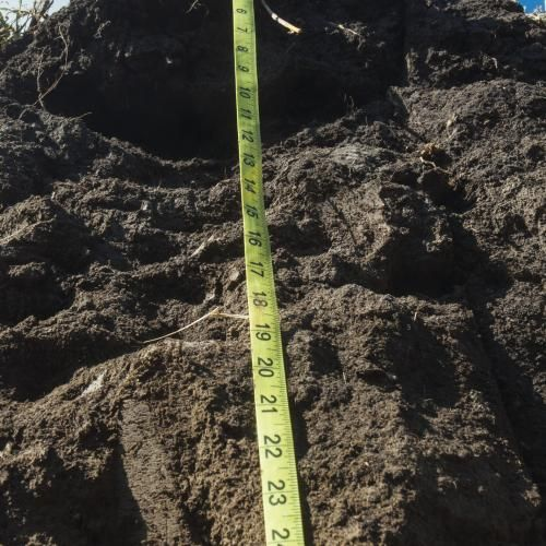 5 Soil Facts | Successful Farming